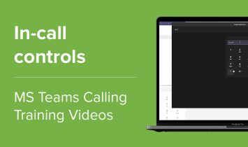 In-call controls
