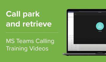 Call park and retrieve
